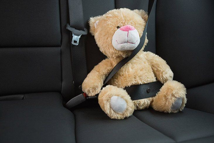 fix a seat belt