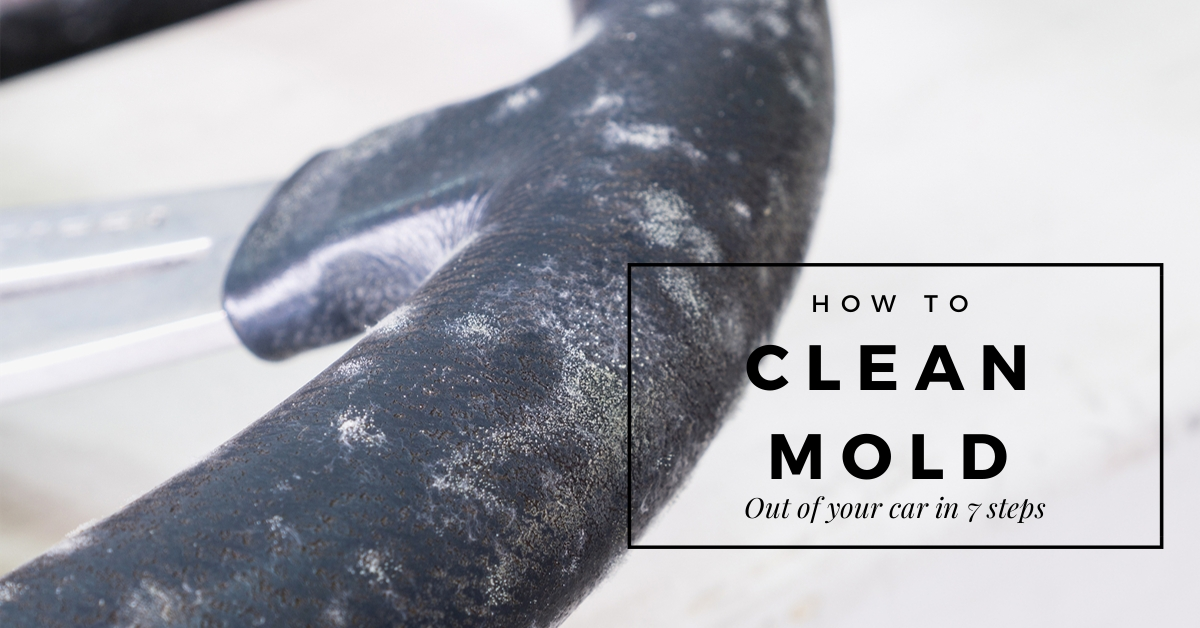 How to Clean Mold Out of a Car